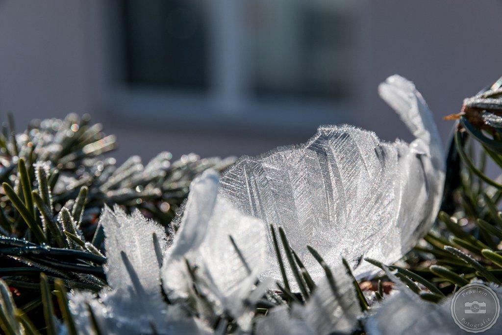 Seifenblase im Winter