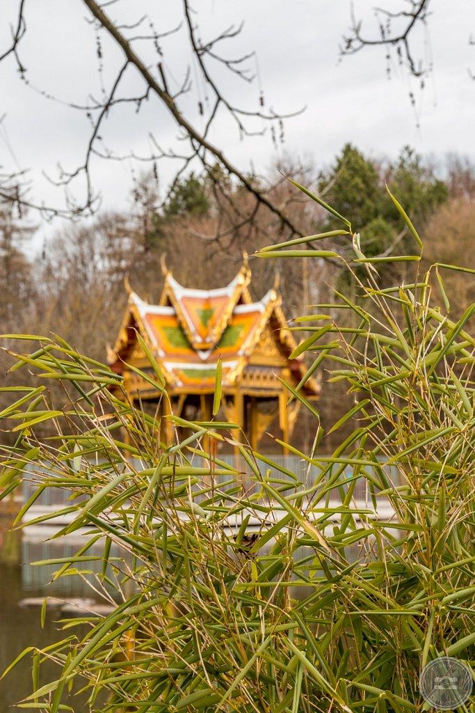 Japanischer Garten im Westpark VI